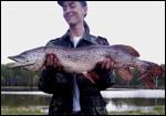 рыбалка форель чеховский